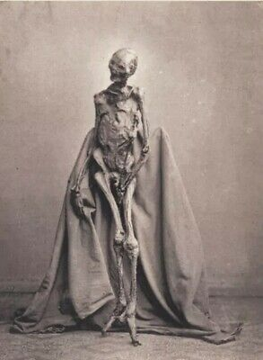 Scary Vintage Creepy Skeleton PHOTO Freak Strange Weird Halloween Bizzare Circus