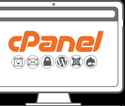Cpanel Web Hosting Unlimited Disk And Resources 7.00 For 3 Years