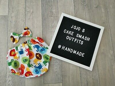 Baby Boys 1st Birthday Cake Smash Outfit/ Prop. Lion, Safari, animals. Colourful