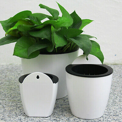 Automatic Water Absorption Lazy Flower Pot Water Culture Wall Hanging Basin NA