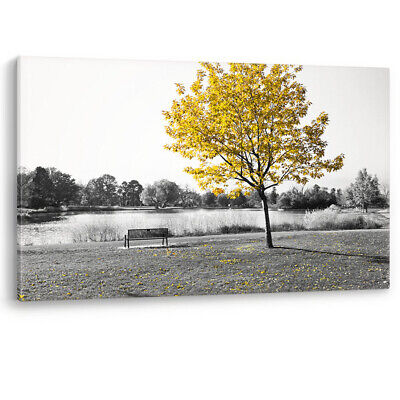 Yellow Tree Park Bench Lake Nature Large Luxury Canvas Wall Art Picture Print A0