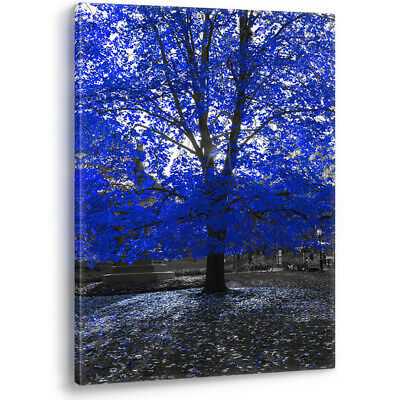 Blue Tree on Black & White Background Large Canvas Wall Art Picture Print A0 A2