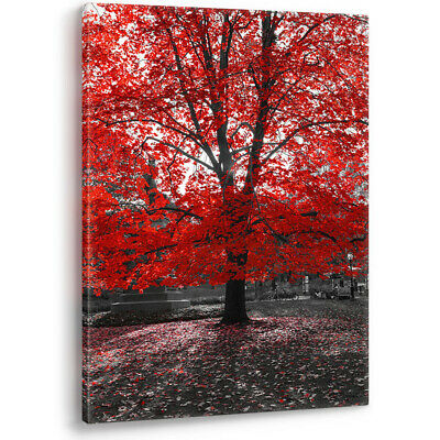Red Tree on Black & White Background Large Canvas Wall Art Picture Print A0 A2