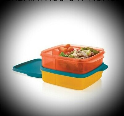 Tupperware Lunch It Divided Lunch Container Set of 2