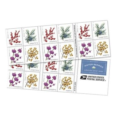 Stamps USA 2019. Winter berries. Booklet. 20 stamps. Pre order. Available 09/17/