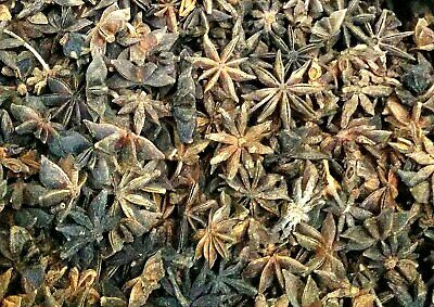 Star Anise Hot Pot Cooking Aromatic Seasoning Tropical Dried Spice Herbs