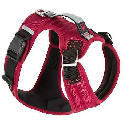 Gooby Pioneer Dog Harness With Control Handle & Seat Belt Restrain Capability