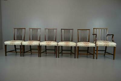 Set 6 Sheraton Style Mahogany Dining Chairs