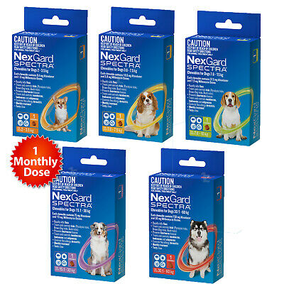 Nexgard Spectra Single for All Size Dogs Worm Tick and Flea Treatment 1 Dose