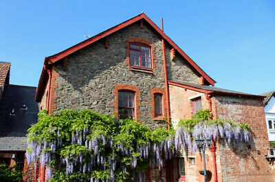 Bowness Holiday Cottage,Porlock,Exmoor Ntnl Park,Sleeps 6,3 Bdrms, Dog Friendly