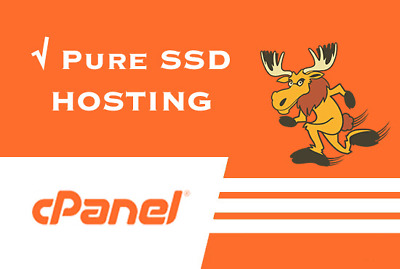 Cloud Business Web Hosting Fast SSD with Softaculous For 1 Year! Free SSL