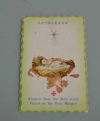 Vtg Christmas Card - Flowers From The Holy Land - Bethlehem