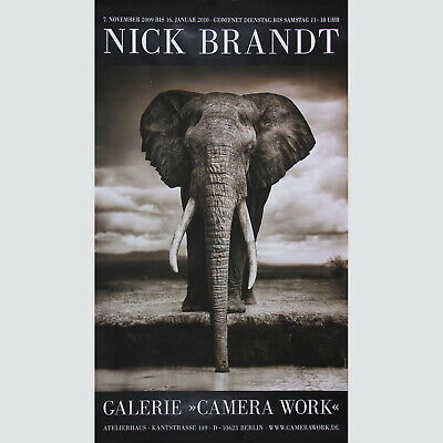 Nick Brandt: Galerie Camera Work, Berlin 2008. Grossformat