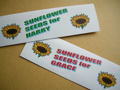 personalised 10  Party Bag Filler with sunflower seed