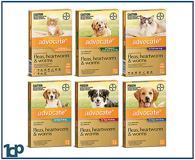 Advocate For Dogs & Cats, Small, Medium, Large 1 Dose - ALL SIZES