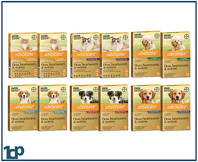 Advocate For Dogs & Cats, Small, Medium, Large 2 Doses - ALL SIZES