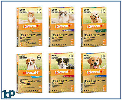 Advocate For Dogs & Cats, Small, Medium, Large - ALL SIZES Worm & Flea treatment