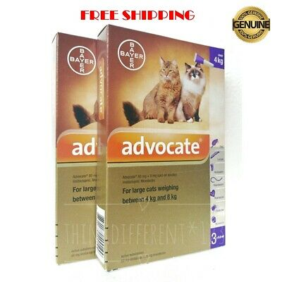 ADVOCATE For Large Cats Over 4-8 Kg Spot-on Treatment PurPle Pack Exp 02-2021