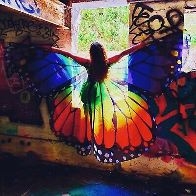 Rainbow Urban Explorer Butterfly Wings Fairy Costume Photo Shoot Or Party