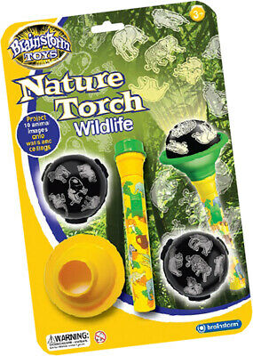 Brainstorm Nature Torch Wildlife Science Oceans Animals Gift Toy Children