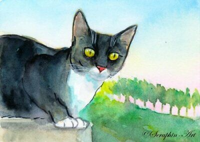 Original ACEO Watercolor Painting Black Cat Tuxedo Kitten Miniature Seraphin-Art