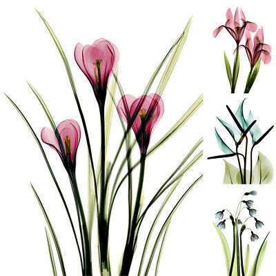 Home Decor Print Wall Picture Flower Art Unframed Modern Canvas Painting Gift