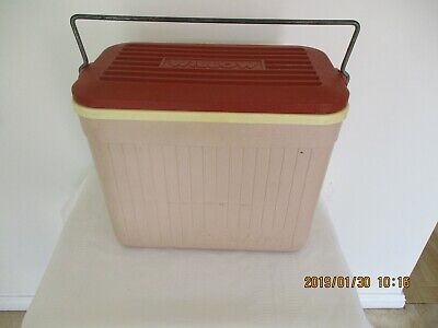 Vintage small plastic Beige Willow-Ramblor Esky 1960s