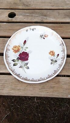 vintage english alfred meakin dinner plate