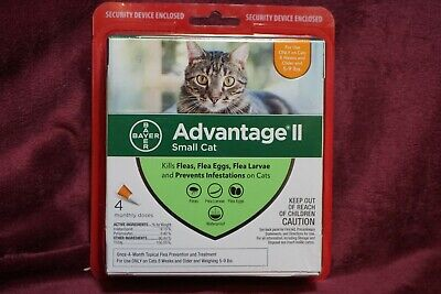 Bayer Advantage Ii Small Cats Kittens Flea Treatment 4 Monthly Doses  New Sealed