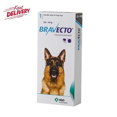1 Chew Bravecto for Large Dogs 20-40 kg / 44-88lbs Free Shipping BLUE