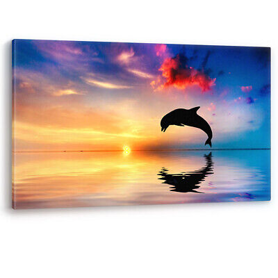 C065 Dolphin jumping at sunset nature lover canvas print  xmas gift