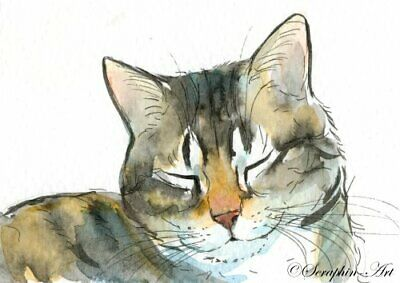 Original ACEO Watercolor Painting Sleeping Cat Tabby Kitten Catnap Seraphin-Art