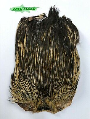 Ref-03 MDI Game Fishing Quality Natural Badger Indian Cock Cape For Fly Tying