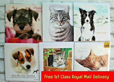 Cats & Dogs Theme Birthday & Blank Greetings Cards - Best Wishes Greeting Card