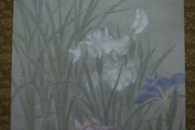 HANGING SCROLL JAPANESE PAINTING FROM JAPAN OLD IRIS FLOWER PLANT VINTAGE 429m