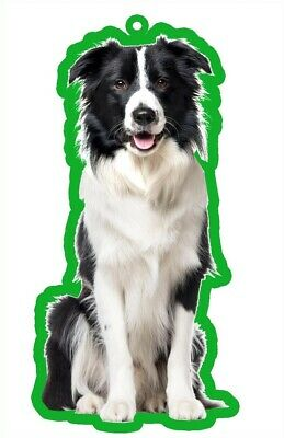 Border Collie Air Freshener X 2 For Your Car Home Long Lasting Fragrance