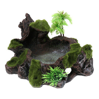 2x Reptile Natural Resin Bowl Food and Water Dish Resin Made Rock Style#1