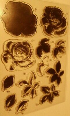 Stempelset Layered clear stamps ROSE neu