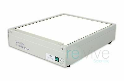 UVP White Light Transilluminator TW-43