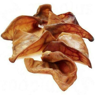 Extra Large XL Pigs Ears Dog Treat Chew