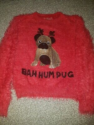 Girls christmas jumper age 10-11, Christmas pug