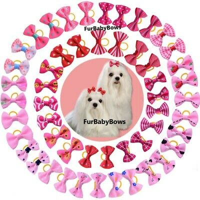 100 Cute Pink & Red Pet Dog Cat Puppy Bows Yorkie, Maltese, Chihuahau Shih Tzu