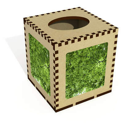 Square 'Sunlight Through Trees' Wooden Tissue Box Cover (TB00002237)
