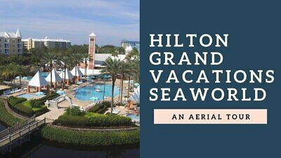 Timeshare at the Hilton Grand Vacations Suites at SeaWorld in Orlando, Florida!