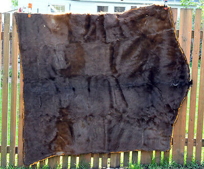 Vintage Ede Horse Hair Carriage Blanket 100+ Years Old Amazing Condition Large