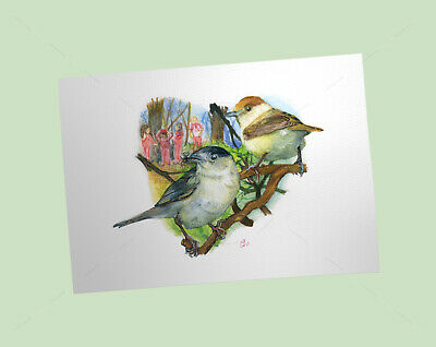 Blackcaps Art Print, British Garden Birds, of watercolour pencil drawing