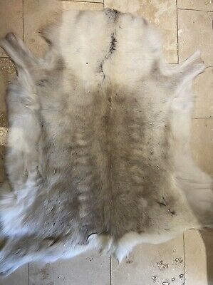 Large Reindeer Rug Hide Neutral Colour From Chatsworth Market Leather Stall