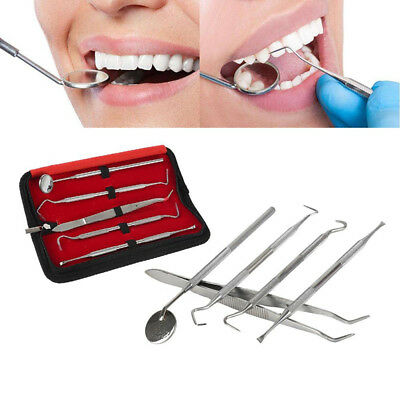 5Pcs Stainless Steel Dental Oral Hygiene Kit Tools Deep Cleaning Teeth Care ~GQ