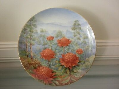Waratahs ~ hand painted plate ~ hand painted by ADRIANA PIPPEN