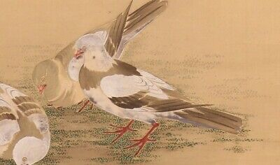 Pigeon JAPANESE PAINTING ANTIQUE HANGING SCROLL OLD From JAPAN Picture d712